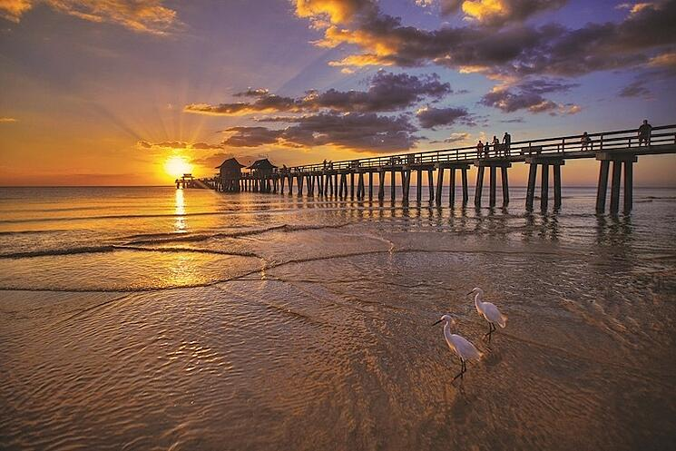 Enjoy picturesque weather on a beautiful beach in Naples Florida..jpg