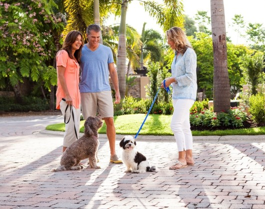 Taking a walk in your new luxury home community will provide ample opportunities to meet your neighbors.