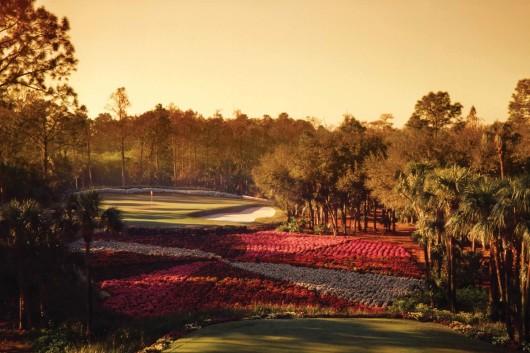 Quail West: A golf community in Southwest Florida
