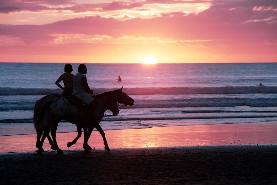 horseback riding on the beach southwest florida